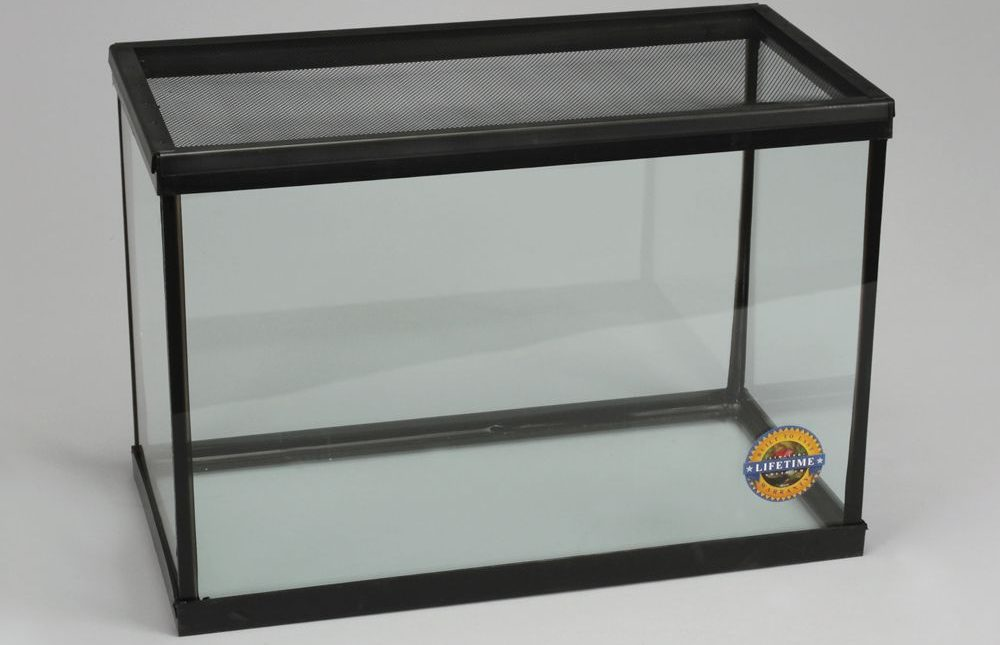Amphibian or Reptile Tank by Carolina Biological Supply Company
