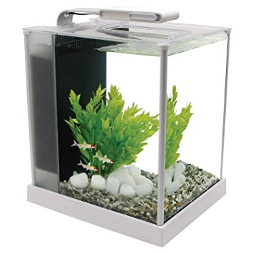 2.6-Gallon Fluval Spec III Aquarium Kit