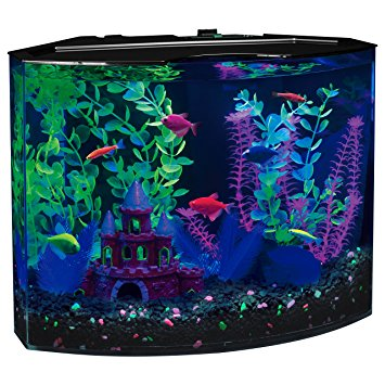5-Gallon GloFish 29045 Aquarium Kit
